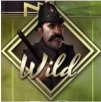 invisible man police wild