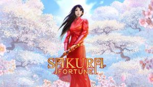 sakura fortune wekelijkse promoties