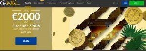 gowild homepage