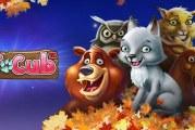 Autumn Giveaway Promotie Bij Casinoluck