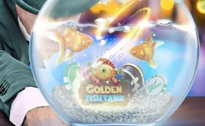 Golden Fish Tank Promotie Bij Mr Green Casino