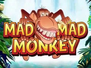 don't monkey around mad mad monkey