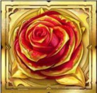 wild rose gold king