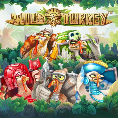 featured wild turkey