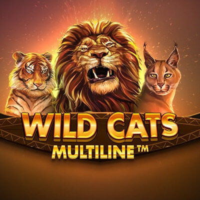 wild cats multiline featured image