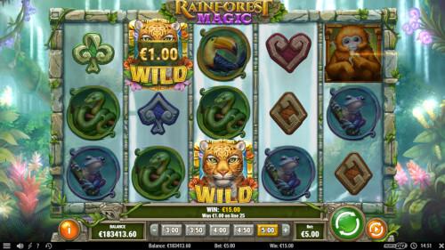 rainforest magic van playngo screenshot