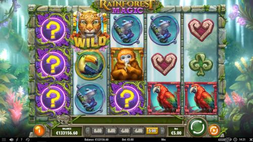 rainforest magic van playngo met wilds