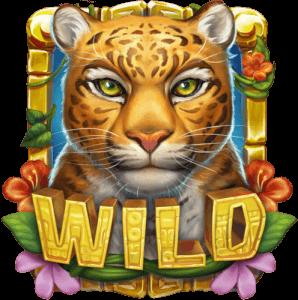 rainforest magic van playngo wild symbool
